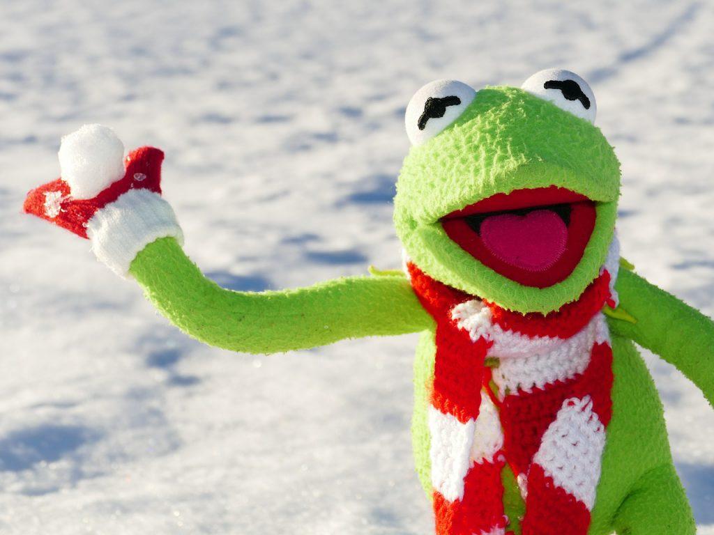 Kermit Snowball